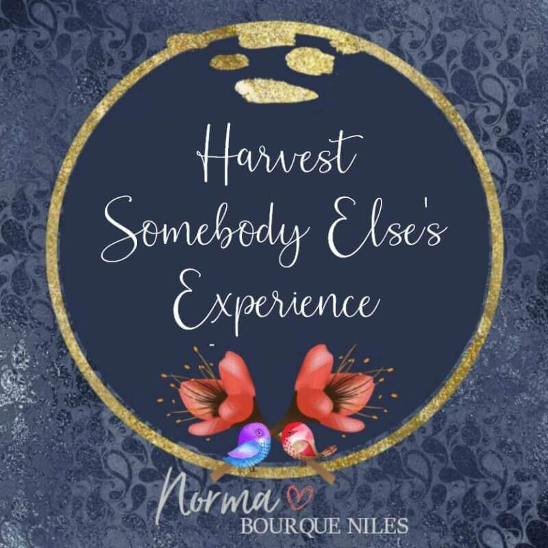 Harvest Somebody Else's Experience