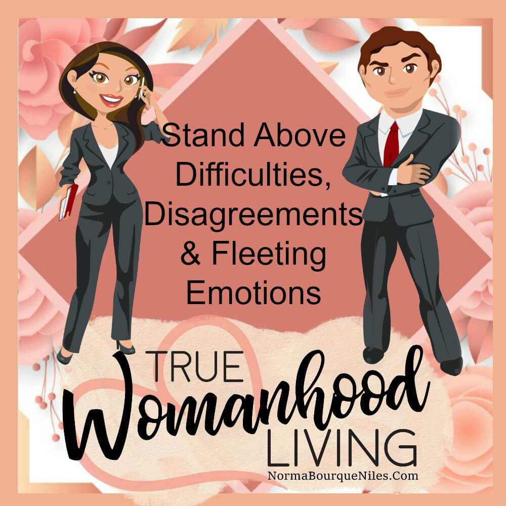 Stand Above Difficulties, Disagreements & Fleeting Emotions